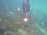 Me Diving 1