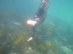 Me Diving 2