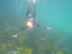 Me Diving 3
