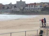 Brave tourists!